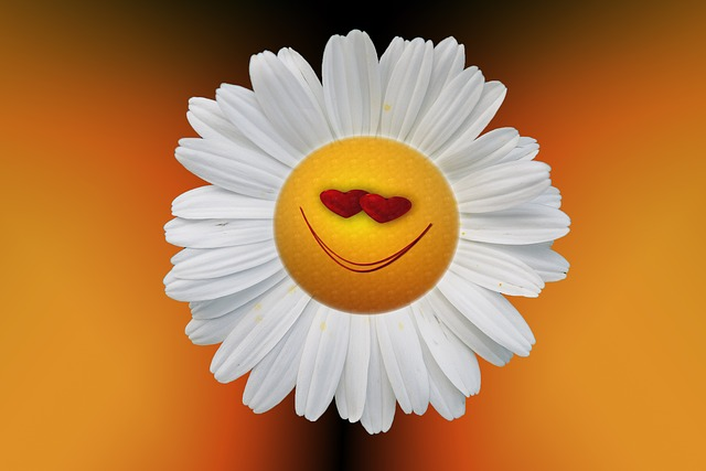 una flor sonriente o happy flower