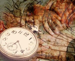 un reloj, la corteza de un árbol, la manos de los abuelos, la textura del tiempo